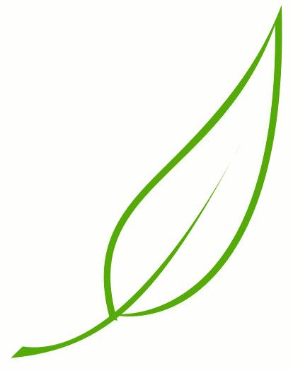 large-delicate-leaf